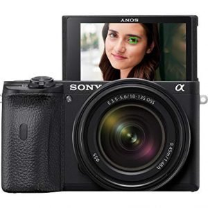 Sony Alpha A6600 Mirrorless Camera